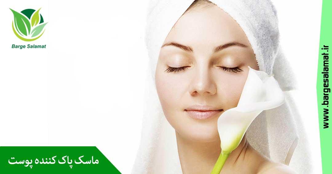 ماسک گیاهی پاک کننده پوست